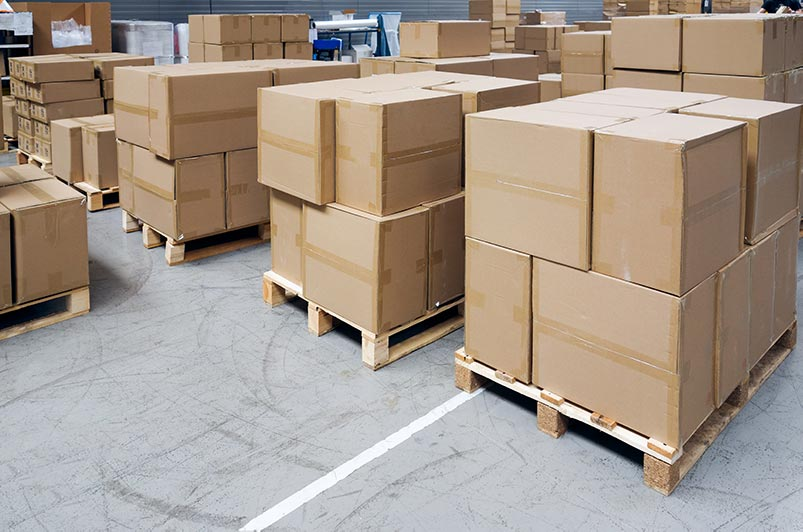 Picture of boxes that may have insects at a warehouse
