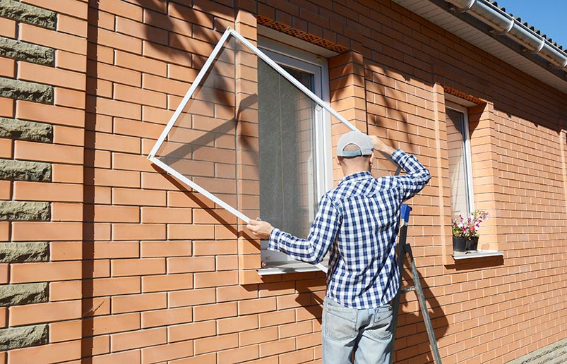 Picture of window screen repair for pest prevention